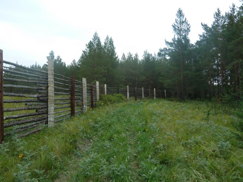 20110817. Астана-Боровое. Ограда, выделившая немаленький кусок леса.