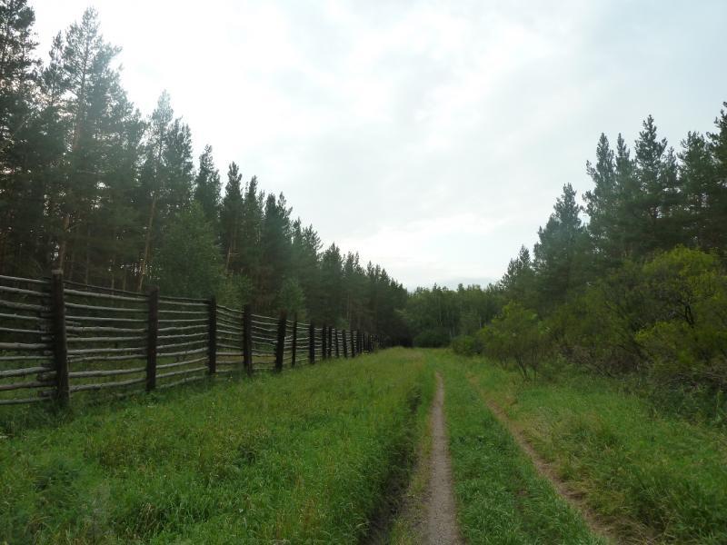 20110817. Астана-Боровое. Следуем вдоль вольера.