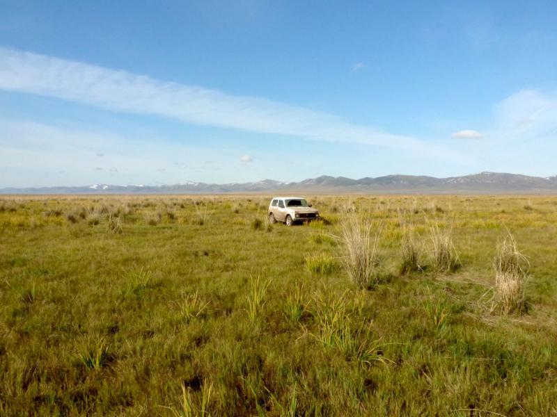 20170928. В урочище Салбык на западе Средне-Минусинской котловины, в полусотне километров от Абакана.