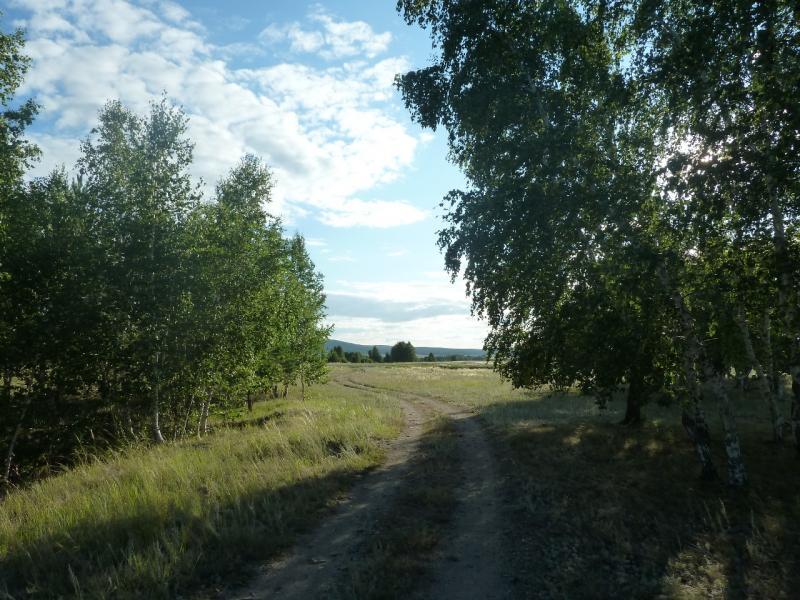 20110818. Астана-Боровое. На северо-западном берегу озера Жукей.