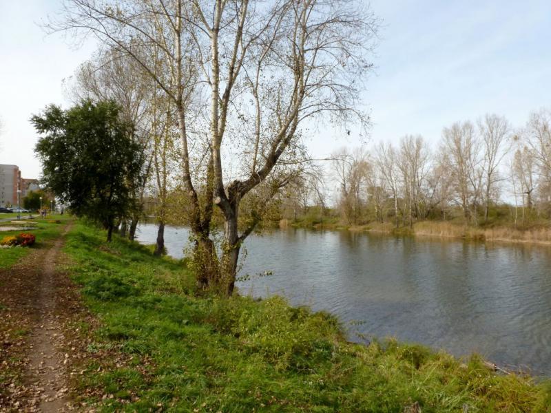 20170928. У дренажного канала (речка Дрена) на северной окраине города Абакан.
