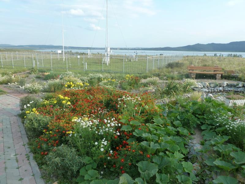 20110820. Боровое. Метеостанция на озере Большое Чебачье. Вид на рабочее поле метеостанции.
