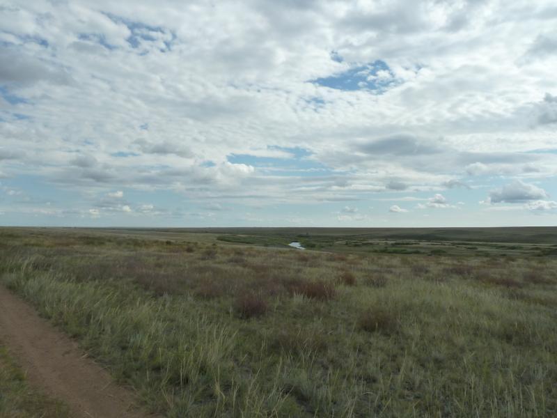 20110824. Боровое-Павлодар. Редкие проблески воды в пойме реки Силети, в районе села Изобильное.
