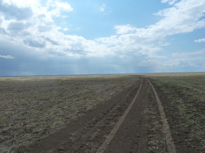 20110824. Боровое-Павлодар. Степная дорога вдоль реки Силети, левый берег.