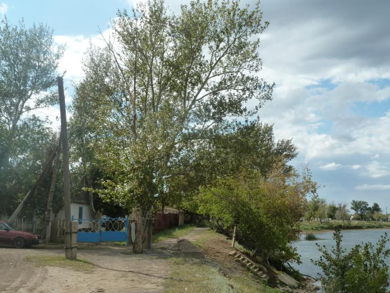 20110824. Боровое-Павлодар. Вид участка села Шолаксор на берегу реки Сиели.