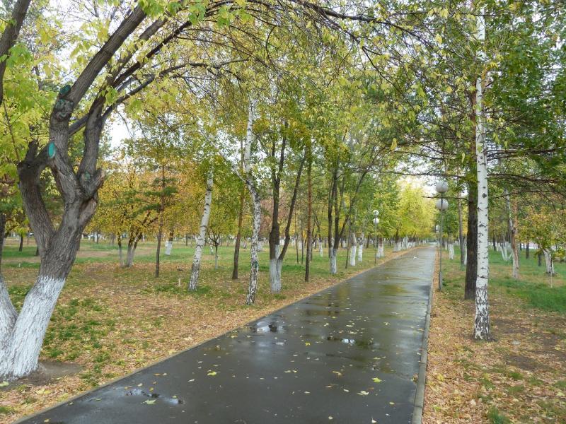 20111009. Павлодар. Парк у площади Конституции. Аллея вдоль южного края.