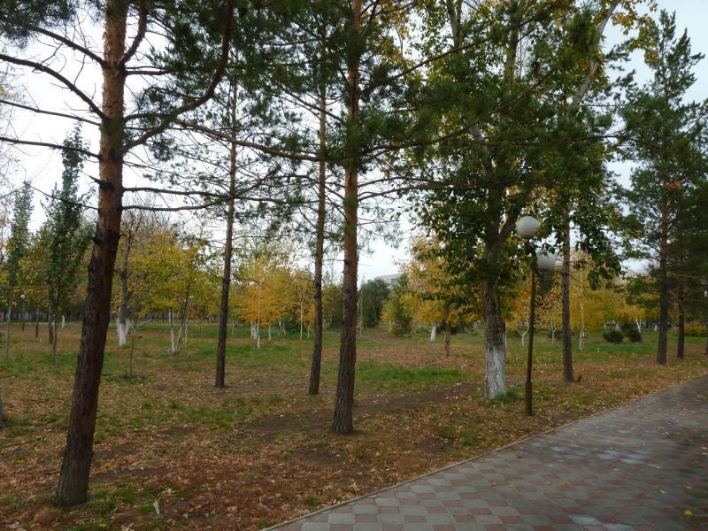 20111009. Павлодар. Парк у площади Конституции. Вид на запад с центральной аллеи.