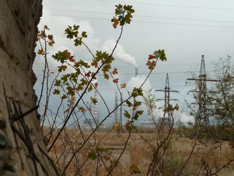 20111009. Павлодар. Парк под алюминиевым заводом. Вид на дымы.