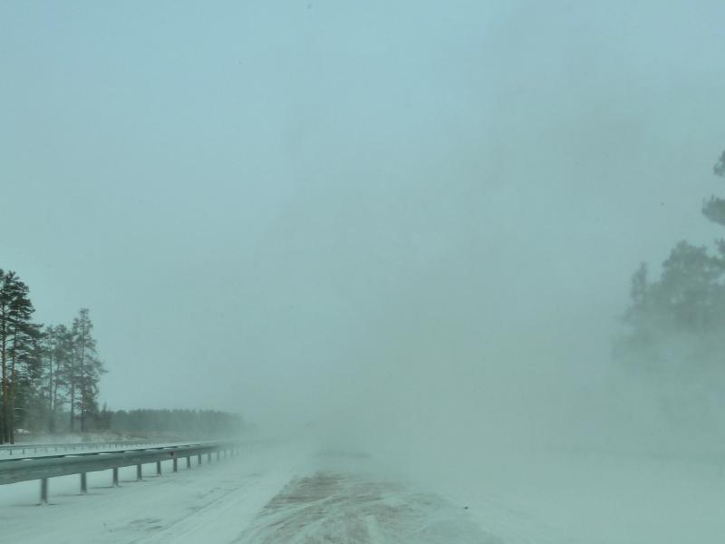 20111119. Прогулка в снегопад. Дорогой в Боровое.