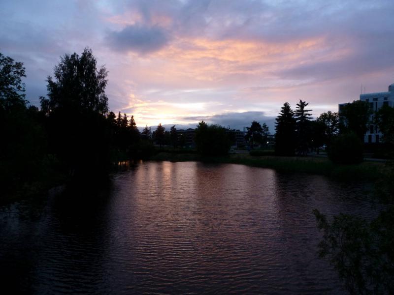 20180606. Вечерний вид с мостика Северной аллеи Приморского парка Крестовского острова.