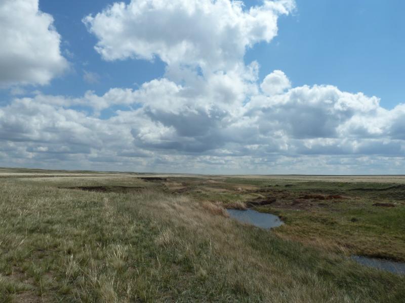 20120506. Канал Иртыш-Караганда: речка Карасу в районе гидроузла #4.