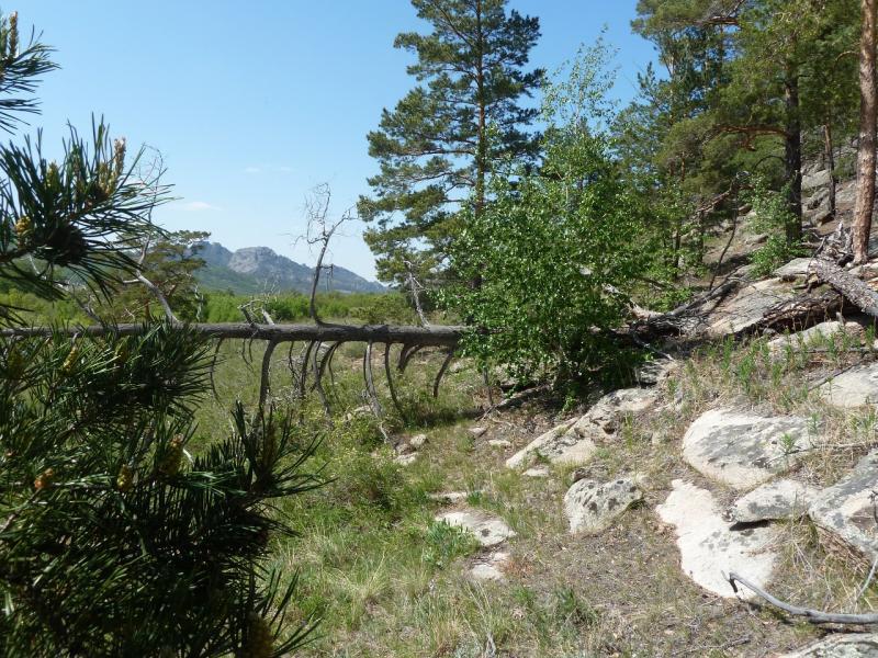 20120509. Ущельями Баянаула: в юго-восточной части долины Жамбак.