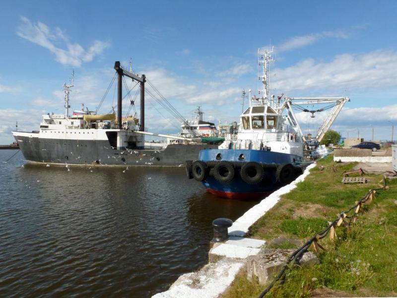 20180609. Ломоносов. Корабли на причале у пирса грузового порта.