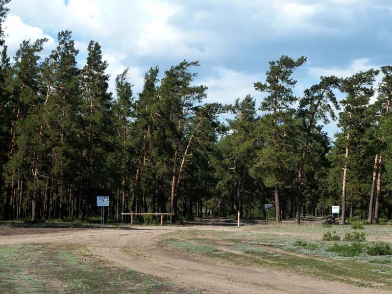 20120515. Шалдайскими борами: выезд на север из села Шалдай.