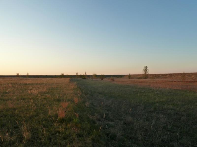 20120516. Краем Щербактинского района: в высохшем искусственном водоёме у села Степное.