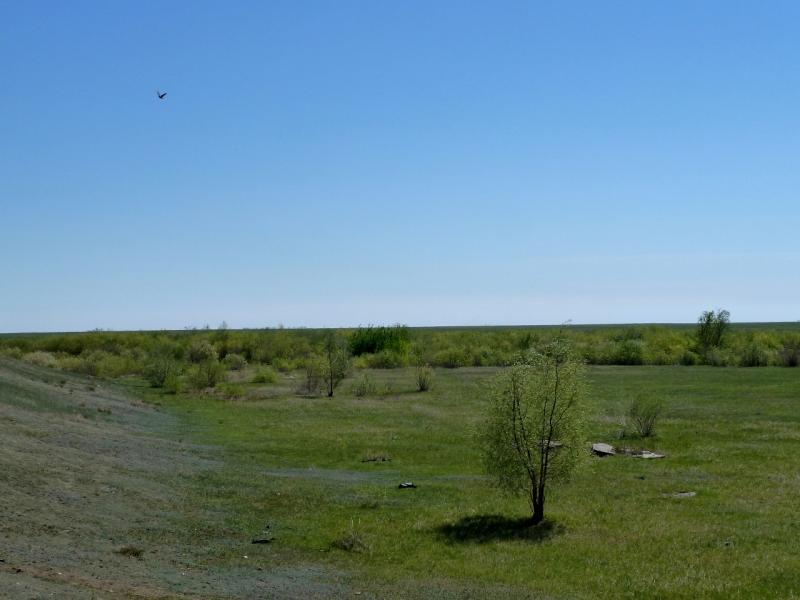 20120517. Степями и полями: внутри бывшего водохранилища у села Павловка.