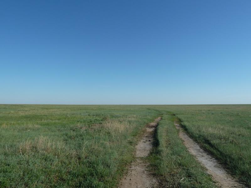 20120517. Степями и полями: в низине между Павловкой и Ковалёвкой.
