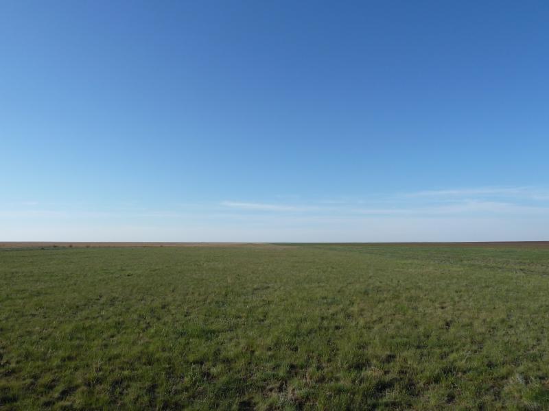 20120517. Степями и полями: порой и так приходится двигаться - просто степью.