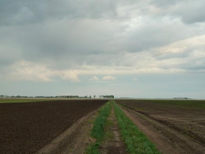 20120518. Успенскими окраинами: полевая многокилометровая дорога.