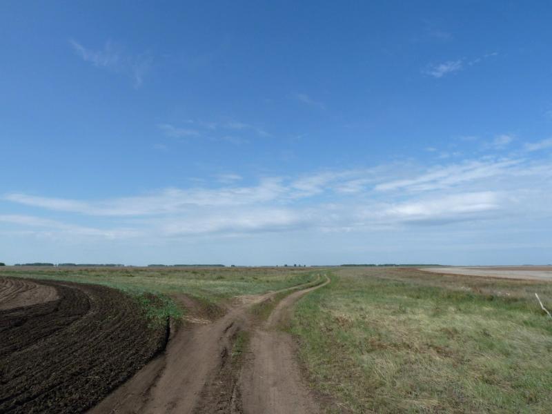 20120520. Огибая урочище Карасук: полевая дорога на село Березовка.