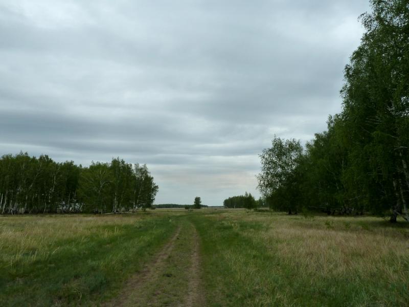 20120520. Границей на северо-запад: лесная дорога на село Тегистик.