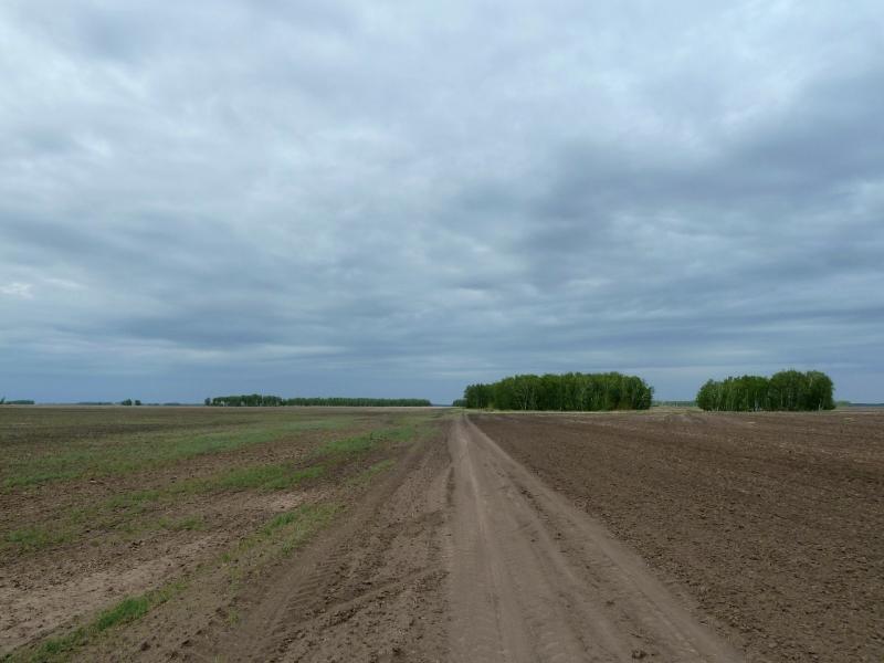 20120520. Границей на северо-запад: полевая дорога Тегистик-Красновка.