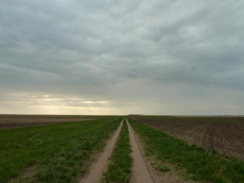 20120520. Границей на северо-запад: полевая дорога Красновка-Благодатное.