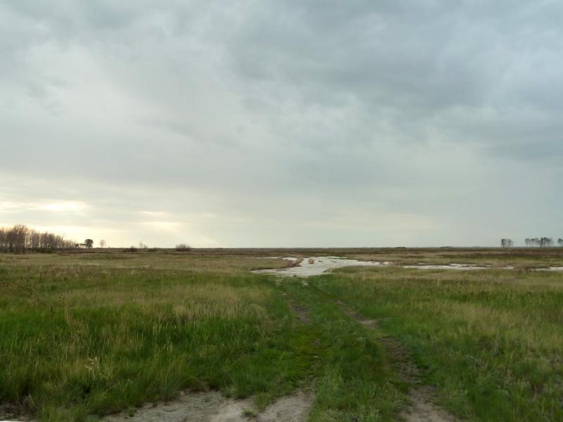 20120520. Границей на северо-запад: дорога Красновка-Благодатное, через низину, между двух солёных озёр.