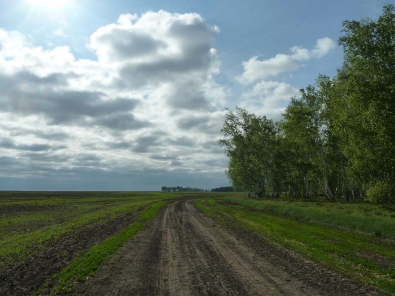 20120521. Пограничными местами: полевая дорога между Петропавловкой и Новокузьминкой.