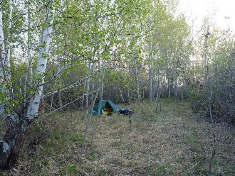 20120521. Пограничными местами: в гуще берёзовой рощи у села Озёрное.