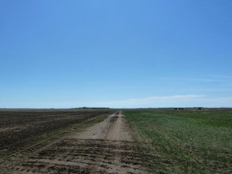20120522. Сухопутным полуостровом: полевая дорога неподалеку от села Озёрное.