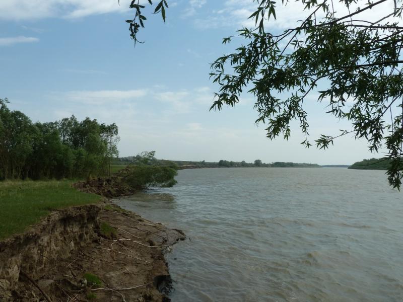 20120524. На юг, вдоль Иртыша: размываемый весенним половодьем берег реки Иртыш.