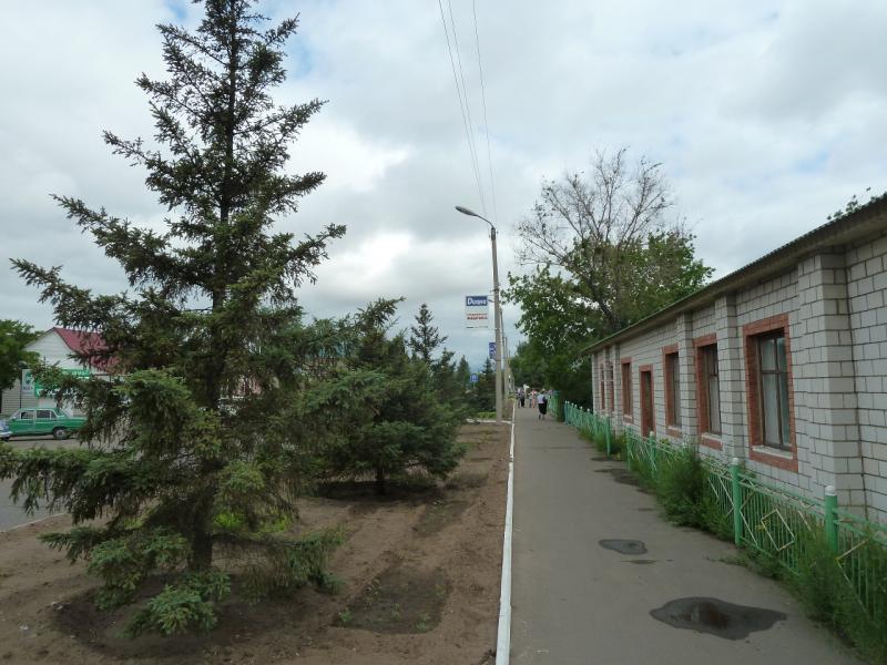 20120615. Кулунда. Тротуарами Кулунды.