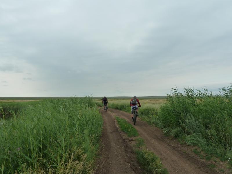 20120630. Баймен-2012: дорогой у болотины Кустомар.