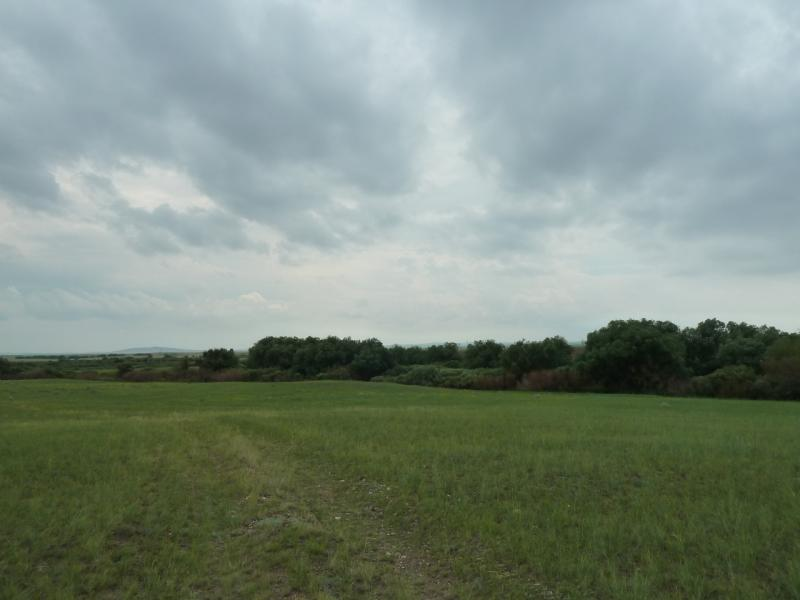 20120630. Баймен-2012: левым берегом речки Мойылды.