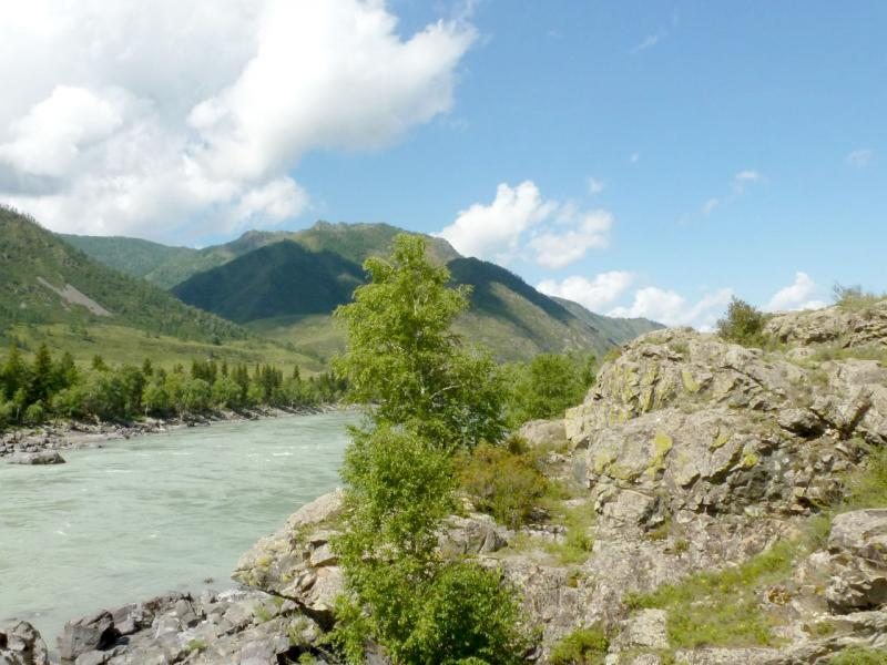 20180806. Скалистые берега Катуни, зажимаемые окружающими горными хребтами.