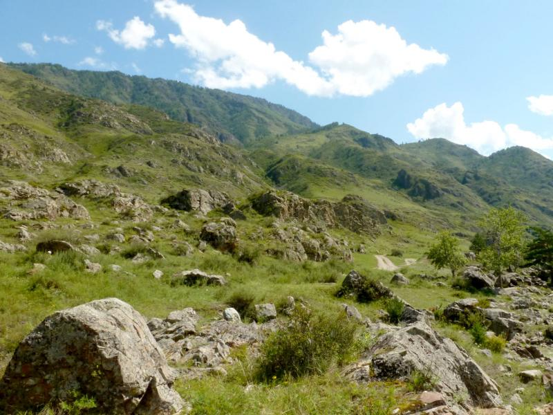 20180806. На берегах Катуни уже нет ровного места без скальных выступов.