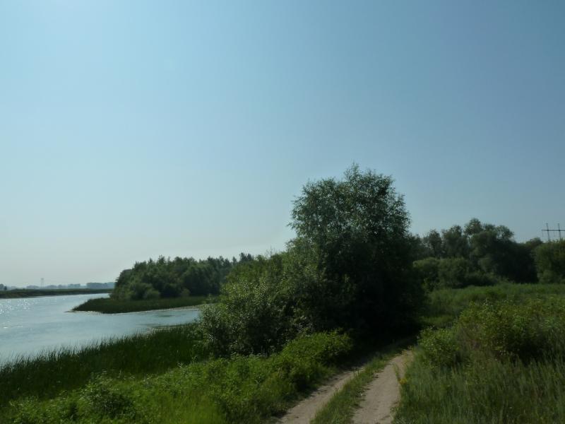 20120715. Павлодар-Аксу: следуем вдоль протоки