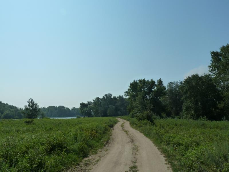20120715. Павлодар-Аксу: дорога вдоль протоки у посёлка Аксу.