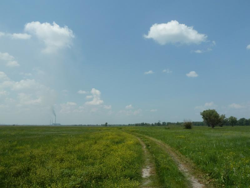 20120715. Аксу-Павлодар: полевая дорога на Аксусскую ГРЭС.