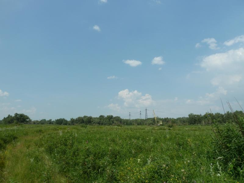 20120715. Аксу-Павлодар: продираемся к началу канала забора воды для Аксусской ГРЭС.