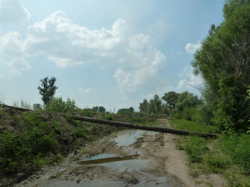 20120715. Аксу-Павлодар: трубы, по которым взвесь ила и песка со дна канала подаётся в осадочные сооружения.