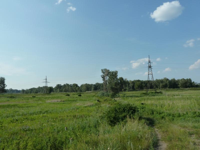 20120715. Аксу-Павлодар: дорога от железнодорожного моста через Иртыш к автомобильному мосту.