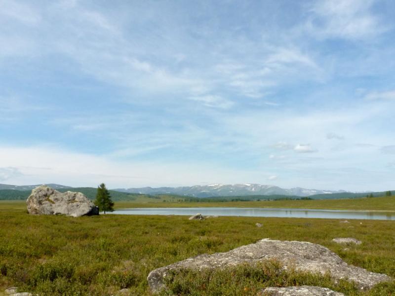 20180808. У безымянного озера, связанного протокой с более крупным соседним Узункёль.