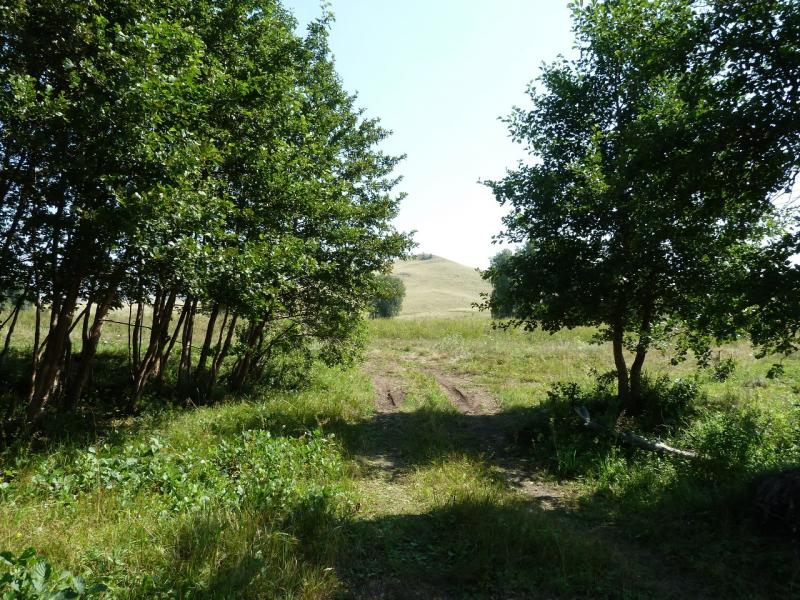 20120804. У переправы через речку Карабулак.