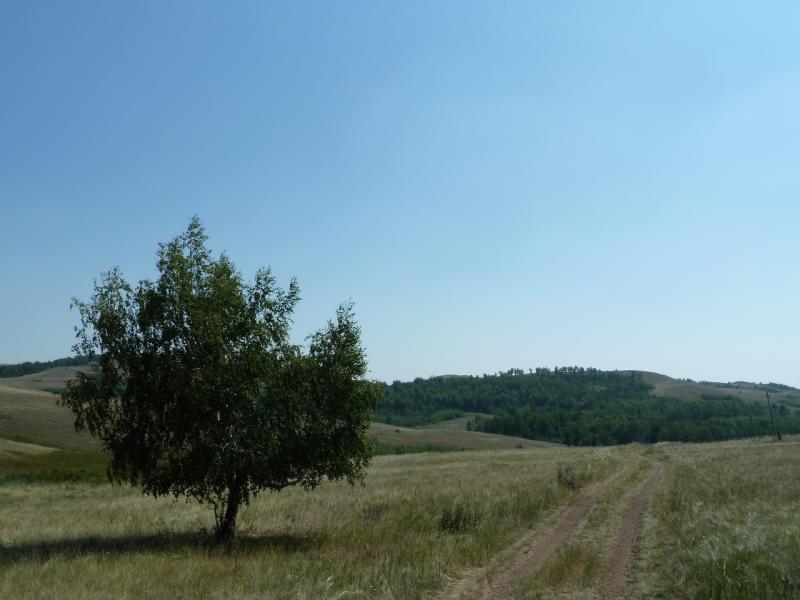 20120804. Просто один из видов у дороги Алгабас-Новокаменка.