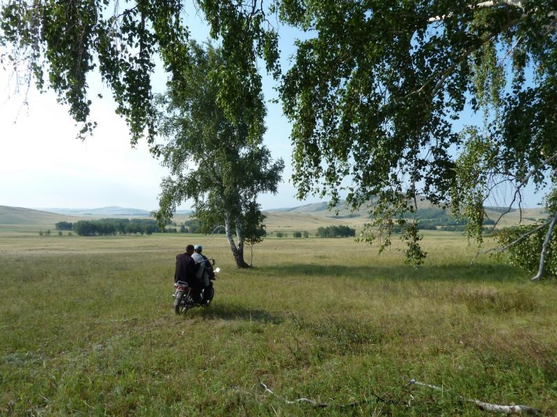 20120805. Чабанам с посёлка Благодатное проще следить за скотом на мотоциклах.