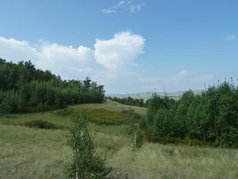 20120805. Небольшая укромная лощина на склоне горы рядом с селом Баймен.