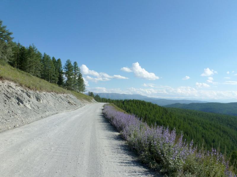 20180809. Дорога Улаганским плато, в районе группы озёр Уч-Куль.