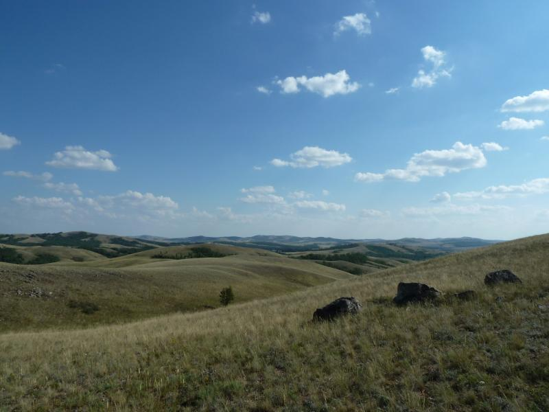 20120805. Вид на горы Ерейментау.